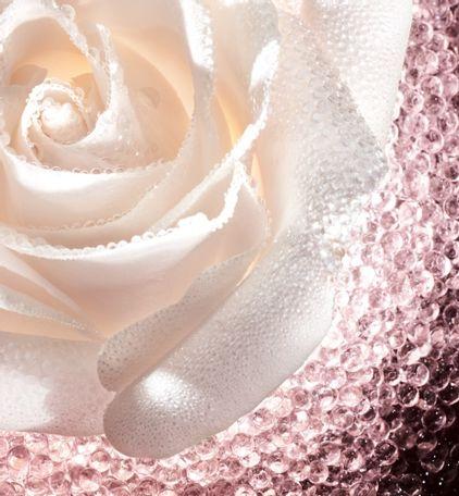 3348901450263_08--thumb03-dior--prestige-le-micro-caviar-de-rose